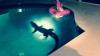 Семья из Флориды обнаружила в своем бассейне двухметрового аллигатора