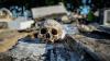 Эксперты установили личность найденного в Турции умершего офицера XIX века (18+)
