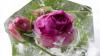 На молдавском рынке появились замороженные розы, привозят их из Африки