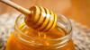 В 2016 году 97% молдавского мёда экспортировали в 20 с лишним стран