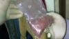 Крупную партию наркотиков обнаружила полиция в квартире жителя столицы