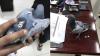Кувейтские таможенники поймали прилетевшего из Ирака голубя-наркокурьера