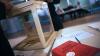 Во Франции один из избирателей проголосовал за стиральную машину