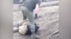 Видео: Бойцы ВСУ подрались из-за ложки (18+)