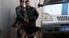 Тело с пакетом на голове обнаружено в лесу в Петербурге