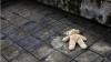 В Запорожье родители уснули прямо на улице, оставив младенца лежать на асфальте