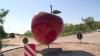На въезде в селе Мерены района Новые Анены появилась инсталляция в виде огромного яблока
