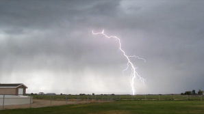 На юге Киргизии молния убила ребенка, двух лошадей и собаку