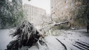 На ликвидацию последствий апрельского снегопада собрано 2,67 млн леев