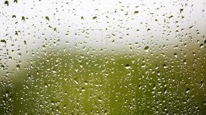 16 мая в республике кратковременные дожди