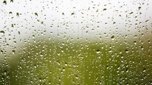 Прогноз погоды на 31 мая