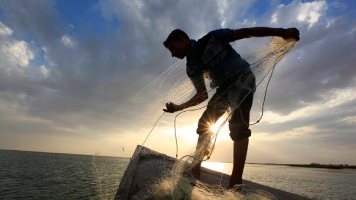 Индийца спасли от прыгнувшей в рот рыбы