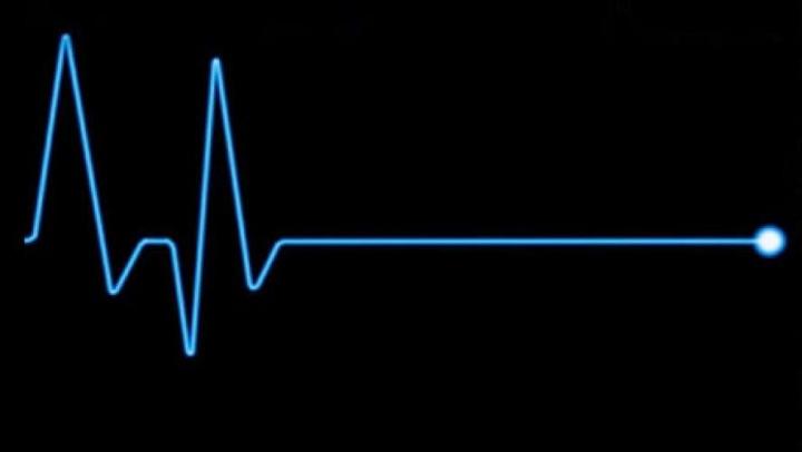 Ученые впервые смогли запечатлеть смерть на видео