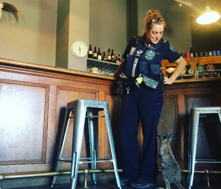 Офицеру полиции в Австралии в напарники достался кенгуру