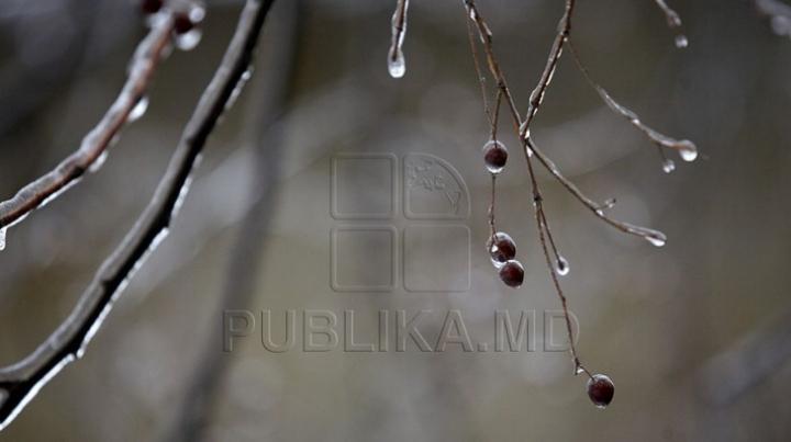 Заморозки на севере страны: столбики термометра опустятся до -2 градусов