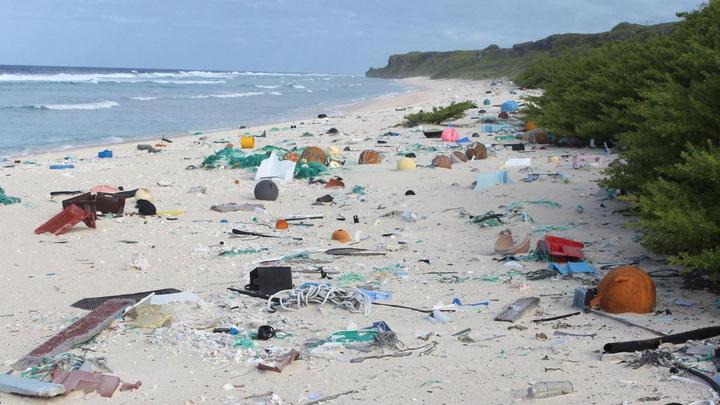 В Тихом океане нашли самый замусоренный остров в мире