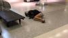 Молодожёнов, которые заметили поломку самолёта, оставили спать на полу аэропорта