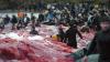 В Дании вновь устроили массовый забой чёрных дельфинов