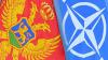 Сегодня Черногория становится 29 страной-участницей НАТО