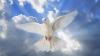 Верующие сегодня празднуют День святого духа