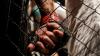 Андрей Романов выйдет на ринг против Юрия Горбенко из Украины