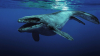 """Вблизи Австралии нашли подводных """"монстров"""""""