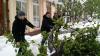 Ветки, поваленные апрельским снегопадом, грозят возгоранием