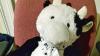 Плюшевая корова спасла выпавшего из окна ребенка