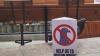В Лондоне нашли презирающего людские запреты голубя-анархиста