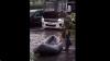 """Житель Подмосковья устроил """"рыбалку"""" на затопленных улицах: видео"""