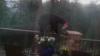 Медведь-хулиган забрался во двор дома, чтобы познакомиться с собакой