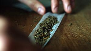 Власти Каталонии легализовали курение марихуаны в клубах