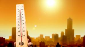 Три четверти населения Земли может погибнуть от жары