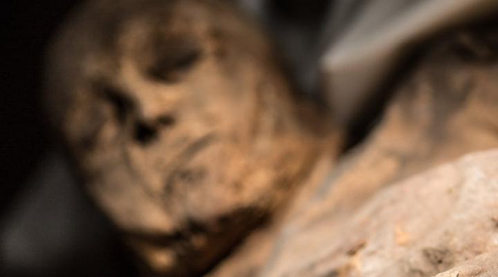 Археологи воссоздали внешность древнеегипетской мумии