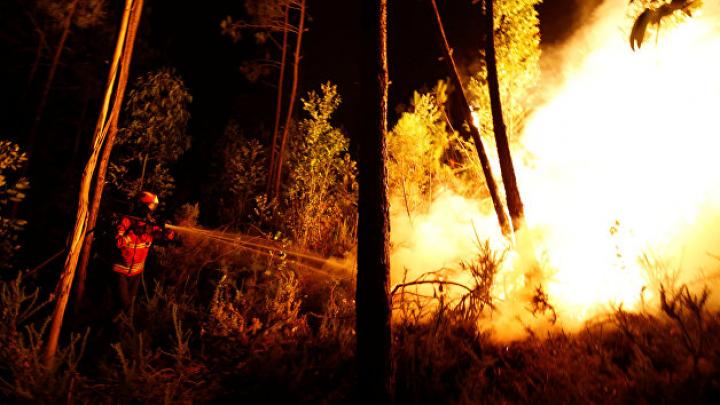 Страны Евросоюза предложили помощь Португалии в тушении пожаров