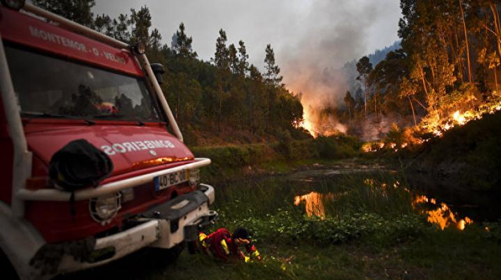В Португалии объявлен траур по погибшим при лесных пожарах