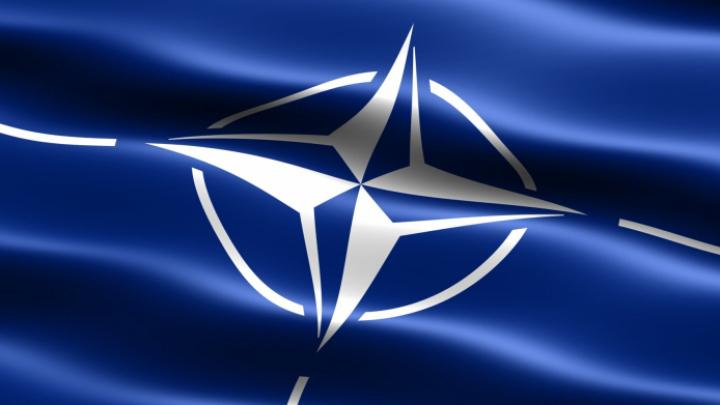 Глава Офиса НАТО в Молдове получила аккредитацию на деятельность в нашей стране