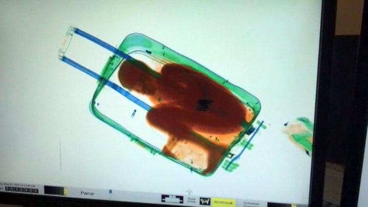 После введения безвиза украинка пыталась провезти ребенка в Польшу в чемодане