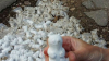 В Саратове заделали засыпанные фигурками котиков дорожные ямы