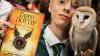 Новые книги о вселенной Гарри Поттера выйдут осенью