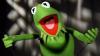Актера озвучки лягушонка Кермита уволили из-за разногласий со сценаристами