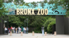 Брат и сестра заразились смертельной инфекцией после посещения зоопарка в США