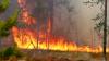 В Албании бушуют 16 природных пожаров