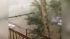 Видео: ураган в Благовещенске вырывает деревья из земли