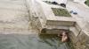 Искупаться в фонтане Киртоакэ: подростков застали во время дерзкого развлечения