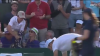 На Уимблдоне болельщик отнял у ребенка брошенное теннисистом полотенце