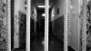 Осуждённые за мелкие преступления смогут отбывать половину срока дома
