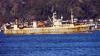 Четверо рыбаков насмерть отравились газом в Норвежском море
