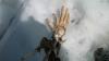 В горах нашли оторванную руку пассажира, погибшего в авиакатастрофе 50 лет назад