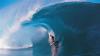 Во время этапа Мировой лиги акула едва не напала на сёрфингистов